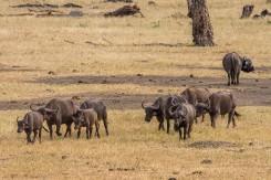 terra_rossa_fotografando_kenya_libro_2017-18