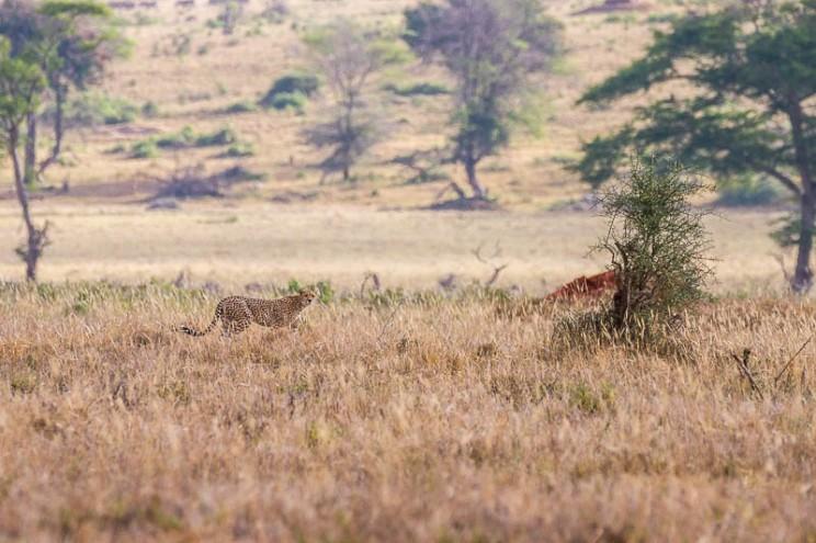 terra_rossa_fotografando_kenya_libro_2017-21