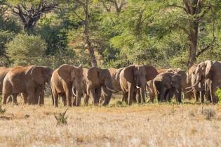 terra_rossa_fotografando_kenya_libro_2017-22